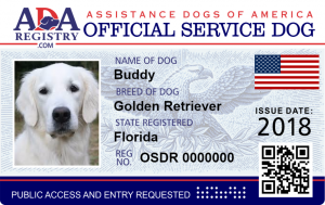 Service Assistance Animals